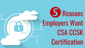 certificate of cloud security knowledge (ccsk), cloud security knowledge, csa ccsk course, csa certificate of cloud security knowledge exam