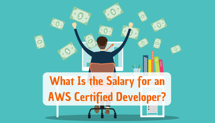 AWS Developer Associate Certification, AWS Developer Associate Certification exam, AWS Developer Associate, AWS Developer Associate exam, AWS Developer, AWS CDA, AWS CDA certification, AWS, AWS certification, AWS certification exams, AWS Associate Developer, AWS Certified Developer Associate